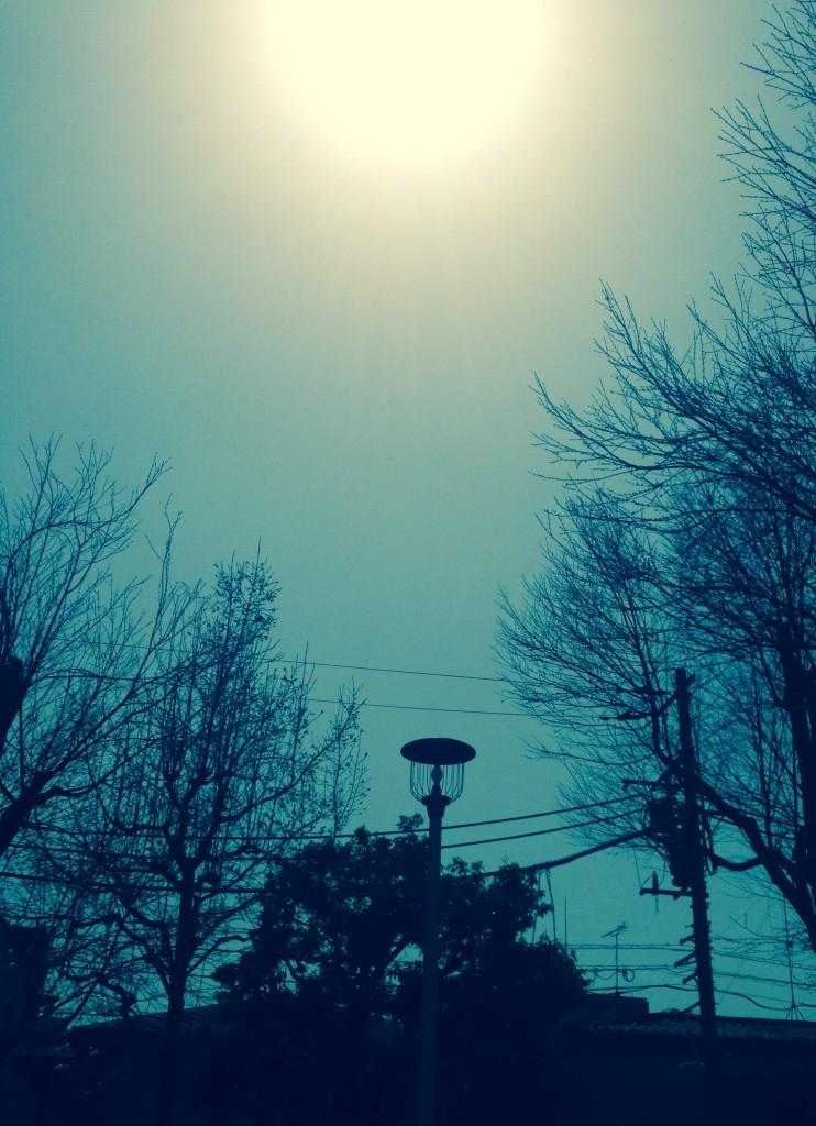 写真 2015-03-22 11 49 57