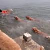 【犬】12匹のゴールデンレトリバー「今日の散歩はハードだぜ〜」