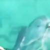 【イルカ】海にスマホを落として困ってたら、イルカが潜って取ってきてくれた。