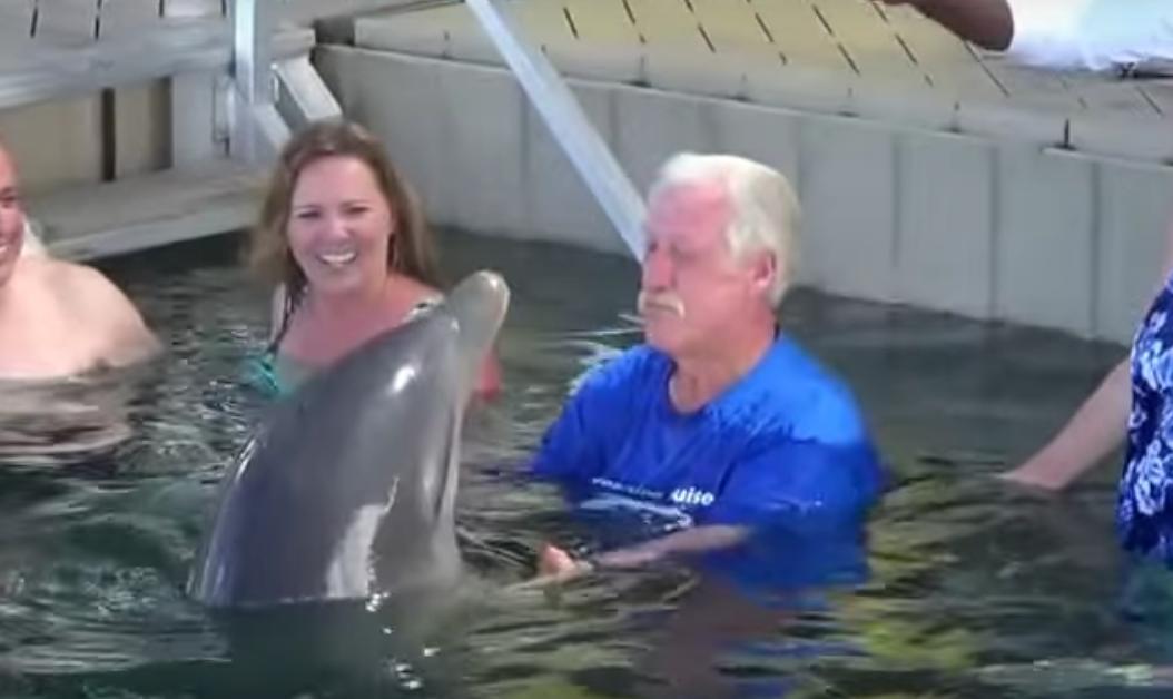 イルカとじいさんの水鉄砲バトル