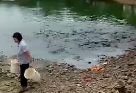 魚氏「腹減ってたら水中とか陸とか関係ねぇから!!」・・・水中から攻めまくる、魚の嵐が発見される