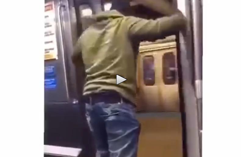 【やってみた】走ってる電車のドアをこじあけて、プラットホームに顔面降車(アメリカ)