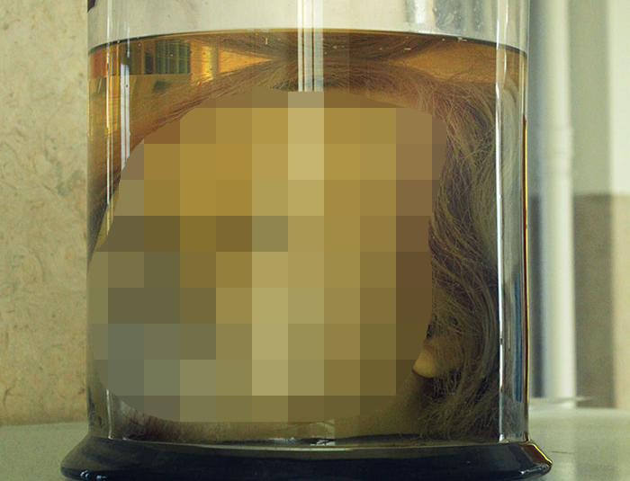 【閲覧注意】保存状態良すぎ・・・凶悪犯罪者の「生首」標本が、今にも喋り出しそうなくらいヤバいお。(ポルトガル)