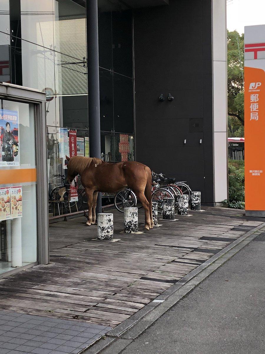 駐輪場 馬