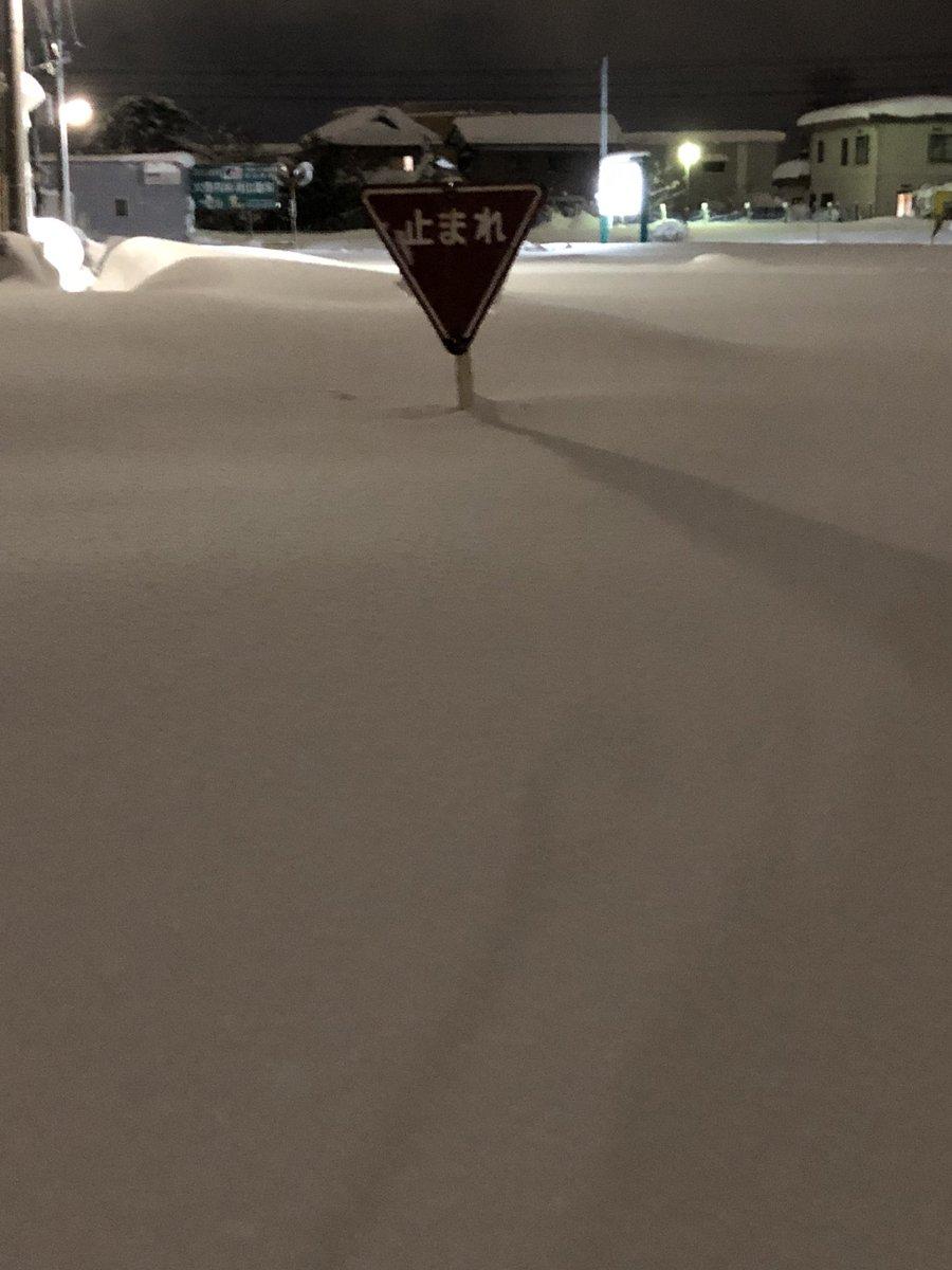 福井 大雪